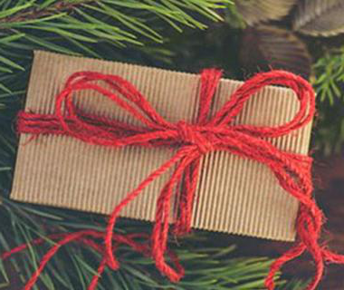 Brown package in a red string bow